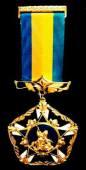 медаль За заслуги і досягнення